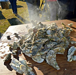 Oyster Roast 2015 pic 7